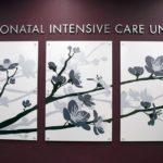 Sisters Hospital Dedicates New Neonatal Intensive Care Unit