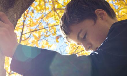 5 Ways to Handle Bullying