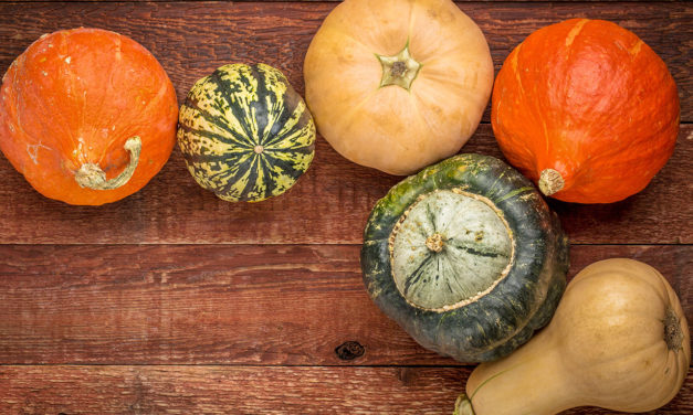 What's In Season: Squash